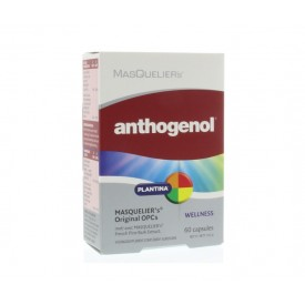 Masqueliers Anthogenol - 60 capsules