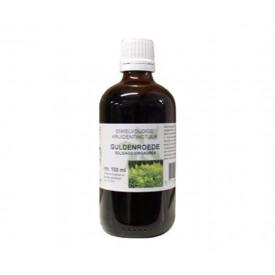 Natura Sanat Solidago virg herb / guldenroede tinctuur 100 ml Phyto